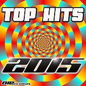 Top Hits 2015 de Various Artists