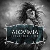 La Flor en el Hielo by Alquimia