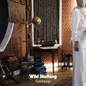 Reichpop by Wild Nothing