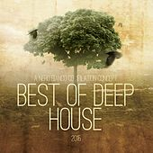 Best of Deep House 2015 von Various Artists