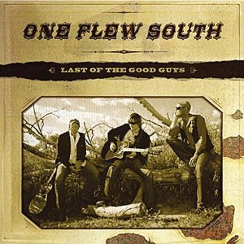 Last Of The Good Guys by One Flew South