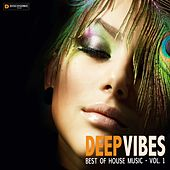 Deep Vibes: Best of House Music, Vol. 1 by Various Artists