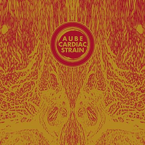 Cardiac Strain by Aube