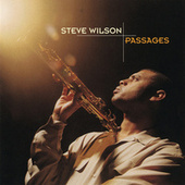 Passages by Steve Wilson