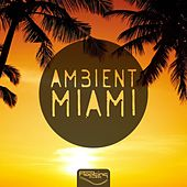 Ambient Miami by Various Artists