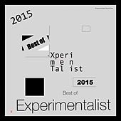 Best of Experimentalist 2015 by Various Artists