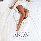 Want Some (feat. DJ Chose) by Akon