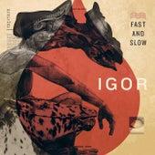 Fast & Slow de IGOR