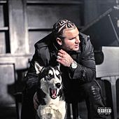 Trench Coat Towers by Jody HiGHROLLER