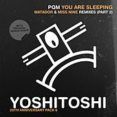 You Are Sleeping (Remix Pack 2) von Deep Dish