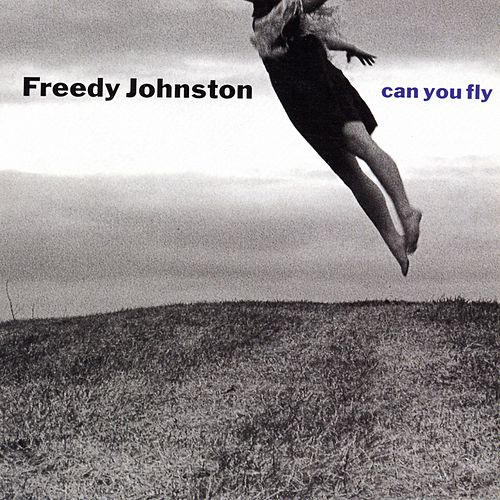 Can You Fly by Freedy Johnston