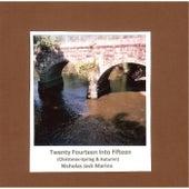 Twenty Fourteen Into Fifteen by Nicholas Jack Marino