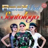 Remix Dut Sontoloyo by Various Artists