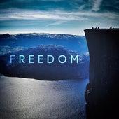 Freedom de Cover Team