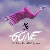 Still Going: The Gone Remixes by JR JR