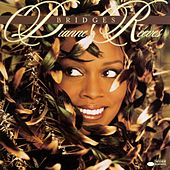 Bridges von Dianne Reeves