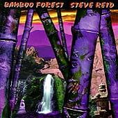 Bamboo Forest by Steve Reid