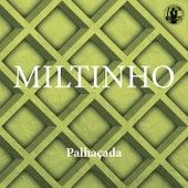 Palhaçada by Miltinho