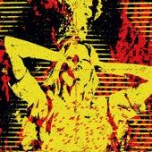 Kylesa / Victims Split by Various Artists