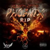 Rebirth of the Phoenix von Rip