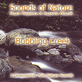 Bubbling Creek by Suzanne Doucet & Chuck Plaisance
