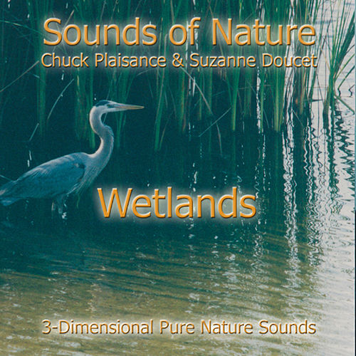 Wetlands by Suzanne Doucet & Chuck Plaisance