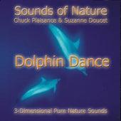 Dolphin Dance by Suzanne Doucet & Chuck Plaisance