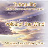 Voice of the Wind by Suzanne Doucet & Chuck Plaisance