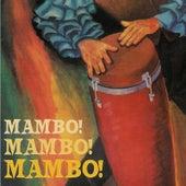 Mambo Mambo Mambo by Mambo Mambo Mambo