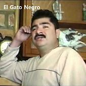 Te Ruego Ser Discreta de El Gato Negro
