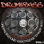 Drum & Bass Wayside Underground Electronic Dance Hits Volume 1 de Various Artists