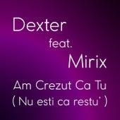 Am Crezut Ca Tu (Nu Esti Ca Restu') by Dexter