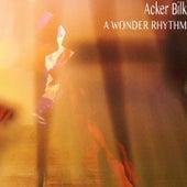 A Wonder Rhythm de Acker Bilk