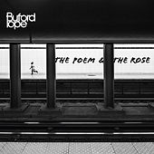 Poem And The Rose by Buford Pope