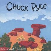 Camel Rock by Chuck Pyle