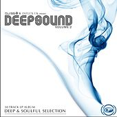 DJ SS & Influx UK Present: Deepsound, Vol. 2 de Various Artists