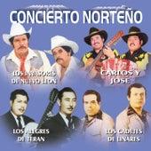 Concierto Norteño de Various Artists