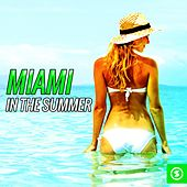 Miami in the Summer by Various Artists