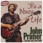 It's a Blues Life von John Primer