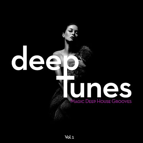 Deep Tunes (Magic Deep House Grooves), Vol. 1 by Various Artists