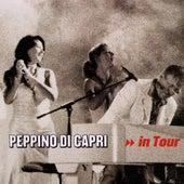 Peppino Di Capri In Tour by Peppino Di Capri