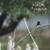 Crossed Lines de Muse Crossing
