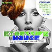 Excessive House - All About Electro & Progressive von Various Artists