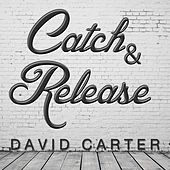 Catch & Release (Remix) by David Carter