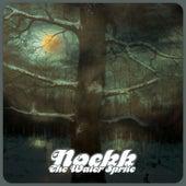 The Water Sprite by Noekk
