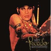 Pecado (1977) by Ney Matogrosso