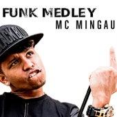 Funk Medley de Mc Mingau