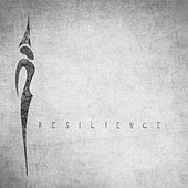 Resilience von Rise
