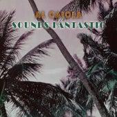 Sounds Fantastic by Al Caiola