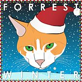 Winter de Forrest
